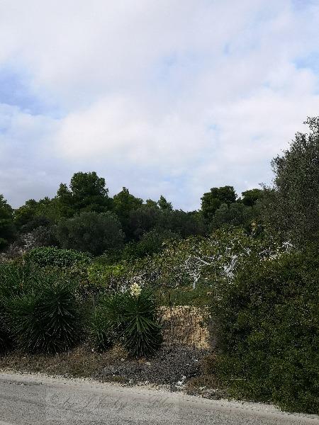 Natur Griechenland