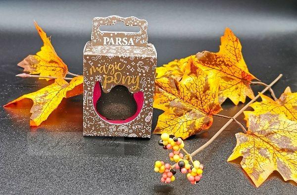 Parsa Oktober Gewinnspiel