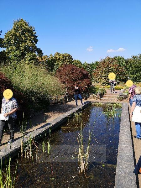 Teichanlage Britzer Garten